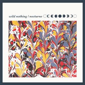 04_wild_nothing