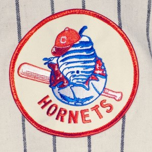 hornets_baseball